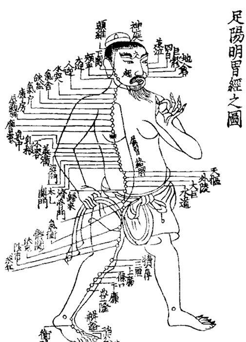 中醫:中醫治病原則