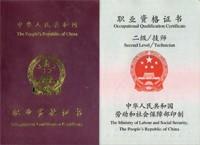 勞動部國家職業資格二級(技師級)