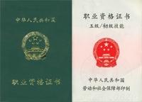 勞動部國家職業資格五級(初級)